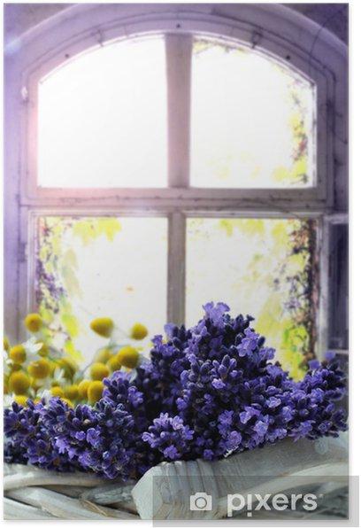 Lavendel Poster - Herbs