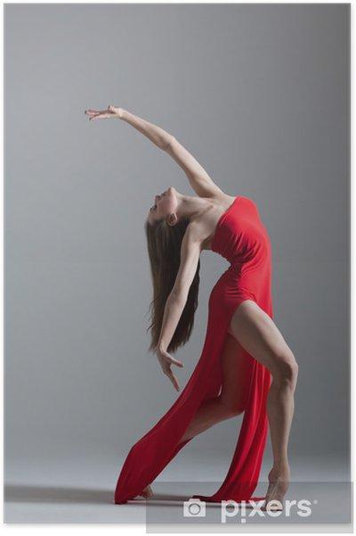 Poster Le danseur - Thèmes