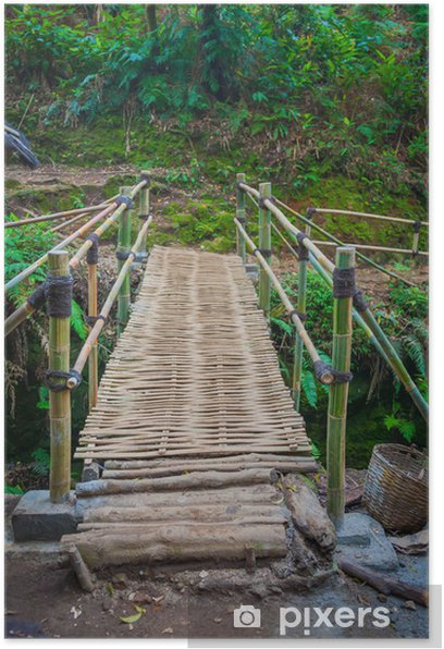 Poster Le pont de bambou sous la pluie forrest - Eau