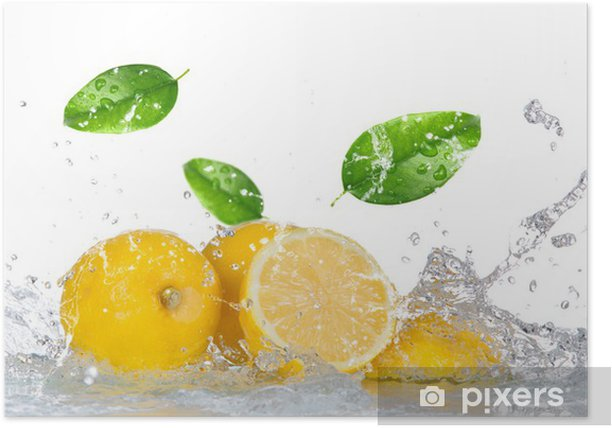 Lemon with water splash isolated on white Poster - Destinations
