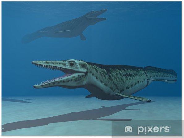 Poster Les mosasaures - Thèmes