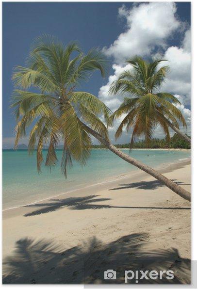 Poster Les vacances au soleil - Amérique