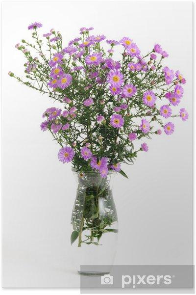 Poster Lila Herbstaster - Saisons