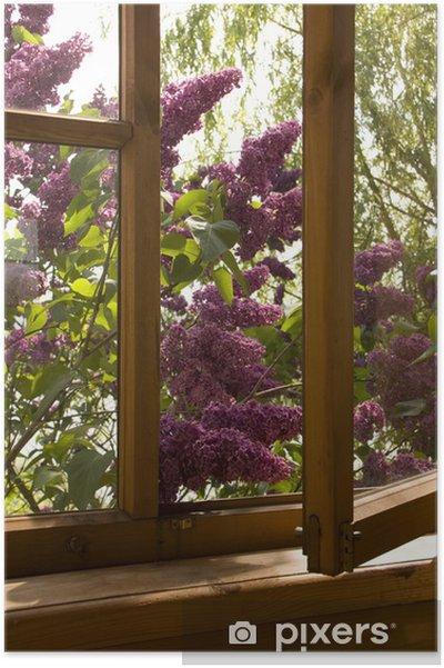 Poster Lila in het venster - Huis en Tuin