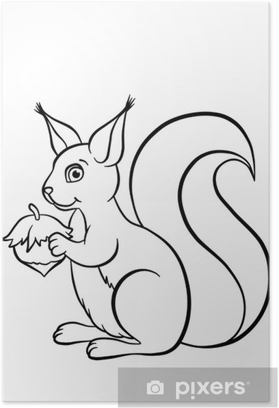 Little cute squirrel with huzelnut Poster - Mammals