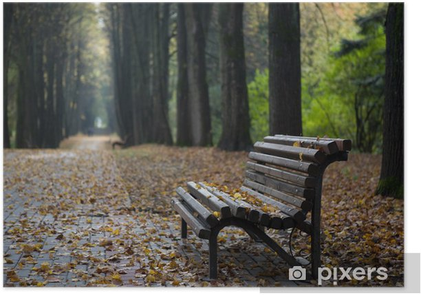 Lonely Wooden Bench In Autumn Park Under Leaves Poster