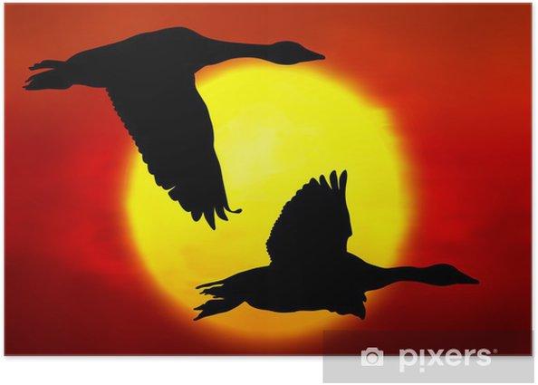 Póster Los gansos vuelan - Aves