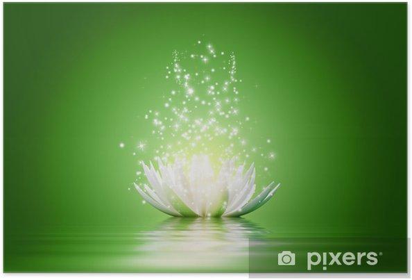 Lotus Flower Poster Pixers We Live To Change