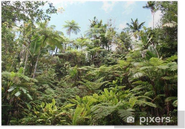Lush Jungle Poster