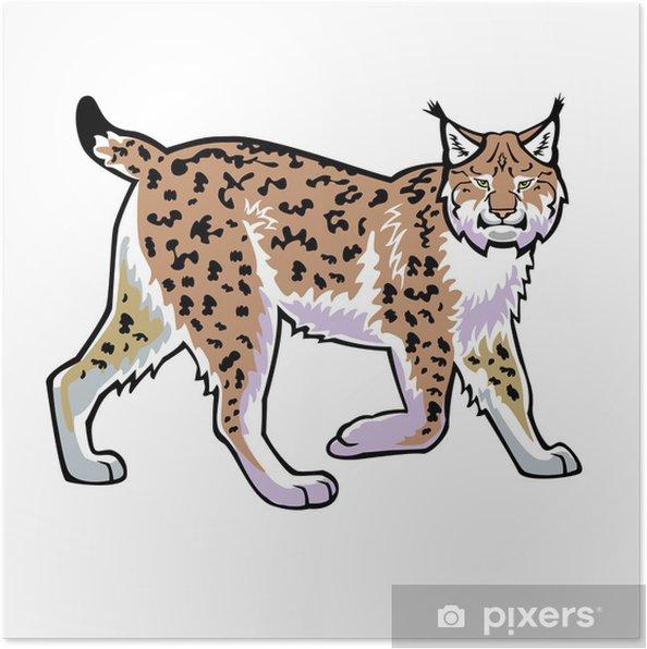 Poster Lynx vecteur isolé sur blanc - Mammifères