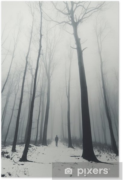man in forest with tall trees in winter Poster - Landscapes