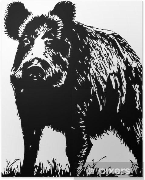 Poster Mannetjesvarken - Zoogdieren