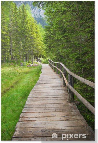 Poster Marcher dans les bois - Vacances