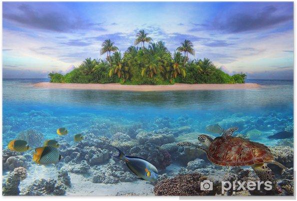 Poster Mariene leven op tropisch eiland van de Malediven -