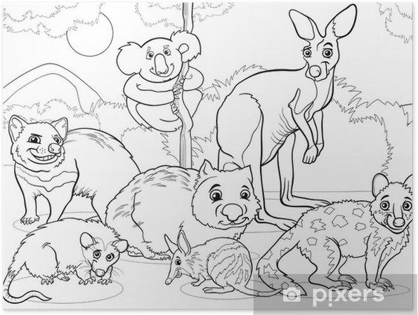 Póster Marsupiales Animales Para Colorear De Dibujos Animados