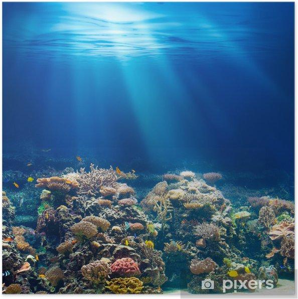 Poster Mer ou l'océan récif corail sous-marin en apnée ou en plongée backgrou - Récif de corail