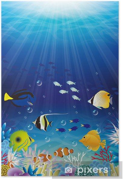 Poster Mer - Sous l'eau