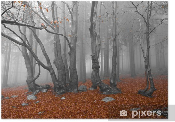 misty forest Poster - Trees