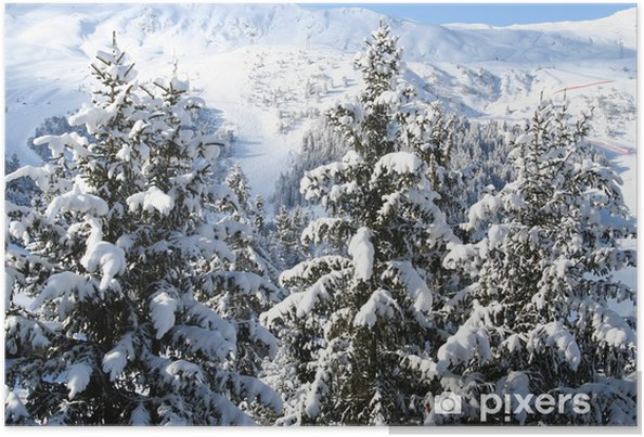Montagne Pin Sapin Neige Poster