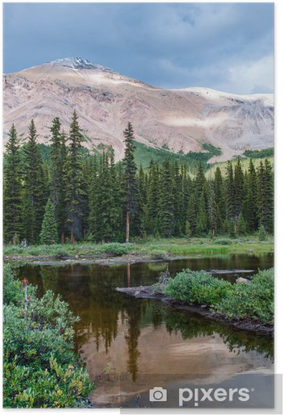 Mountain scenery with small pond in Banff national park Poster - Water