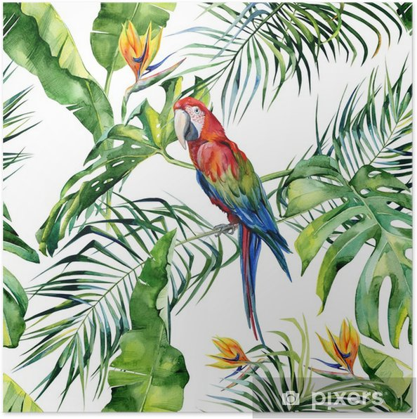 Poster Naadloze aquarel illustratie van tropische bladeren, dichte jungle. Geelvleugelara papegaai. strelitzia reginae bloem. hand geschilderd. patroon met tropisch zomermotief. kokosnoot palmbladeren. - Grafische Bronnen