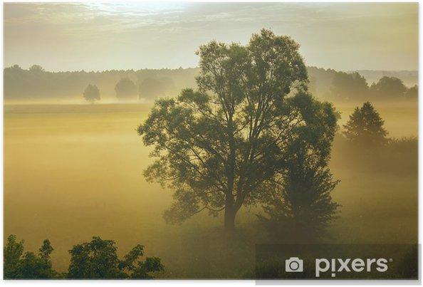 Póster Neblina - Naturaleza y zonas salvajes