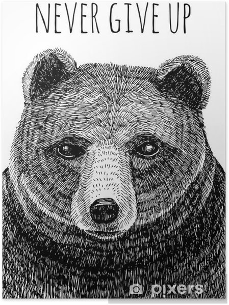 Poster Never give up slogan. Bear hand getrokken illustratie - Dieren