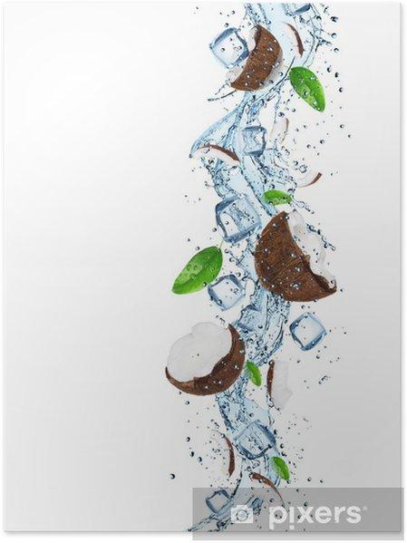 Poster Noix de coco avec les projections d'eau - Repas