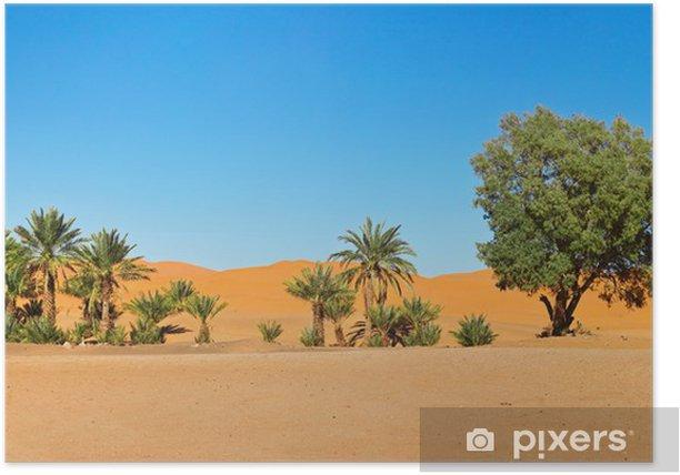 Poster Oasis dans le désert du Sahara au Maroc - Désert