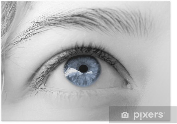 Poster Oeil de femme bleu clair ciel , regard rêveur - Thèmes