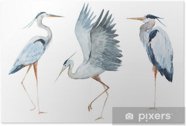 Poster Oiseaux Aquarelle héron - Animaux