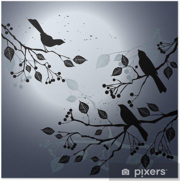 Poster Oiseaux sur la branche pendant la nuit de l'été - Merveilles naturelles