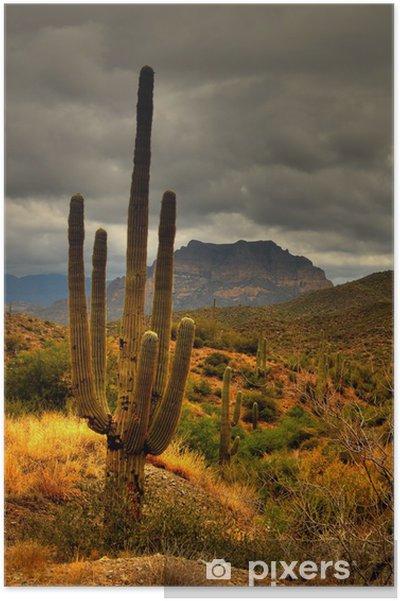 Poster Öken Saguaro 81 - Berg