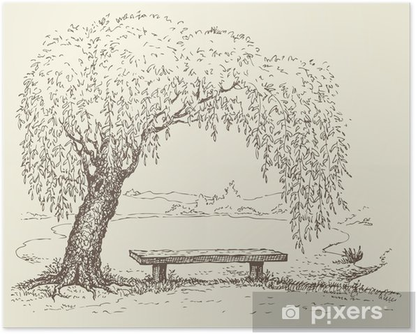 Old bench under a willow tree by the lake Poster - Seasons