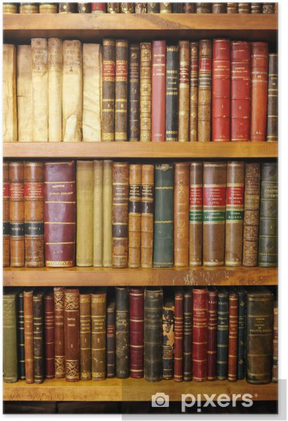 Old books, library Poster - Library