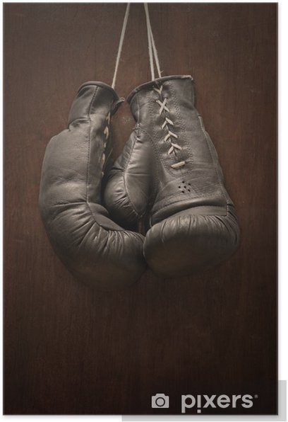 Old boxing gloves Poster - Themes
