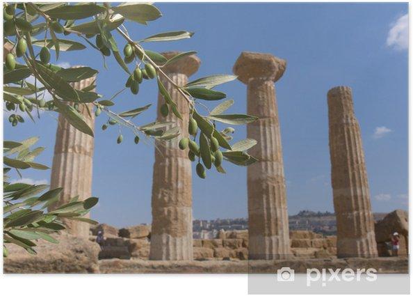 Poster Olive Branch et la colonne grecque - Vacances