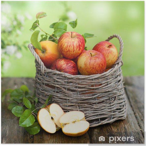 Poster Oogsttijd - Appelbomen