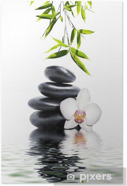 Poster Orchidée blanche fleur fin bambou -