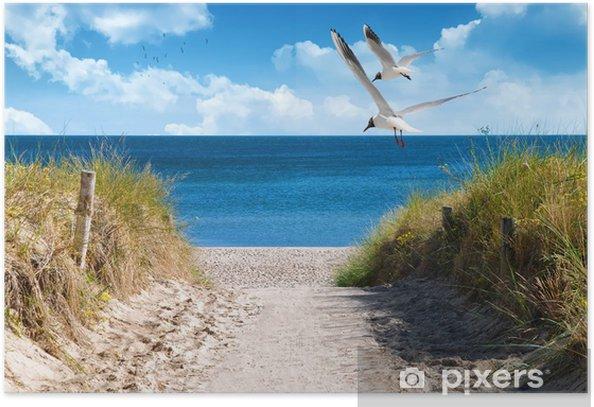Ostseeküste Poster - Sea and ocean