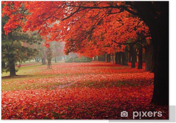 Póster Otoño rojo en el parque - Destinos