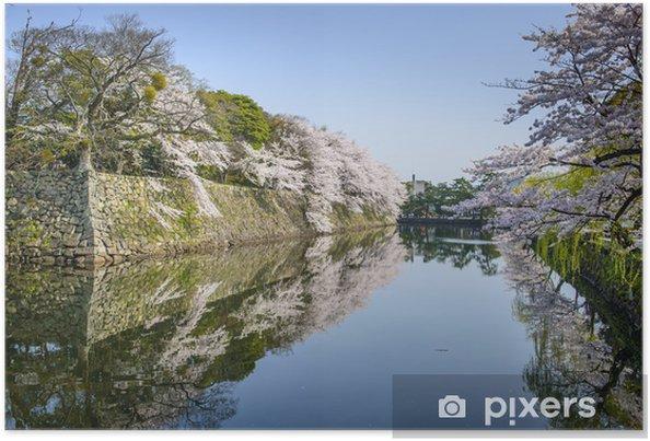 Poster Outer Castle Moat à Hikone, Japon - Asie