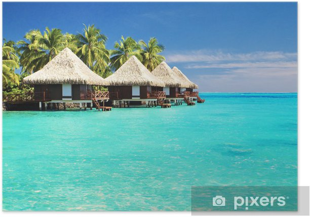 Over water bungalows with steps into amazing lagoon Poster - Palm trees