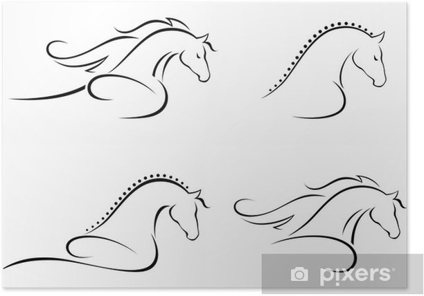 Poster Paard hoofd - Zoogdieren