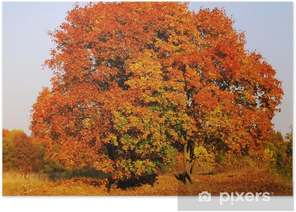 Paints of Autumn Poster - Seasons