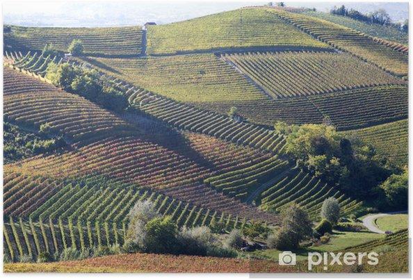 Póster Paisaje otoñal de vides y de colinas en Langhe, Italia - Agricultura