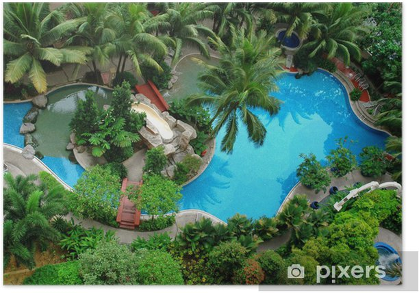 Palm And Swimming Pool Top View Poster Pixers We Live To Change