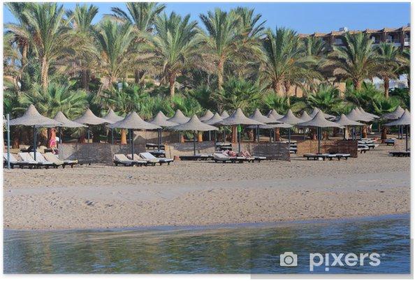 Póster Palma y playa - África