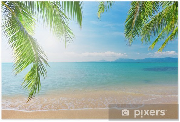 Poster Palmbomen en tropische strand - Stijlen