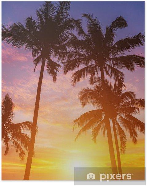 Poster Palmiers sur le fond d'un beau coucher de soleil - Thèmes